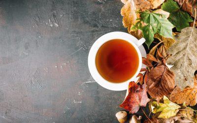 Oczyszczanie organizmu jesienią